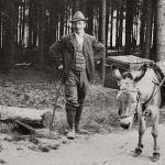 Osel v lese, Čerchov